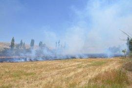 Karaman'da tarlada çıkan yangın, elma bahçesine de sıçradı