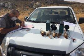 Karaman'da usulsüz av yapanlara 354 bin TL ceza!