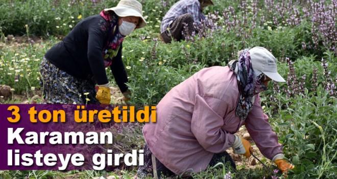 Karaman ada çayı üretiminde listeye girdi