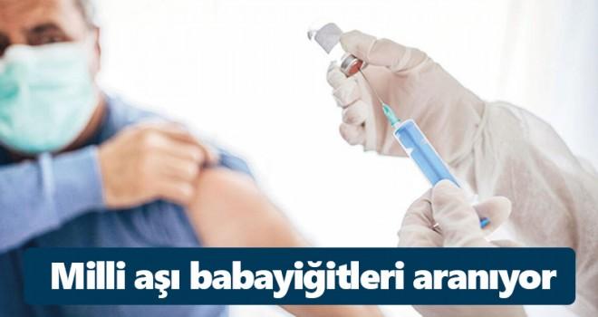 Milli aşı babayiğitleri aranıyor