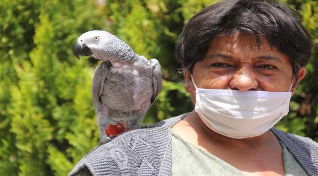 İhtiyaç kredisiyle satın aldığı papağan