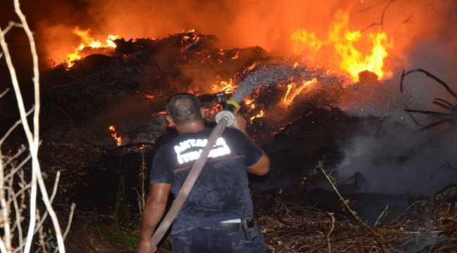 Antalya'da yangın seralara sıçramadan söndürüldü