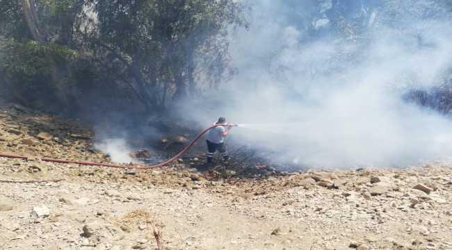 Hatay'da zeytinlik yangını