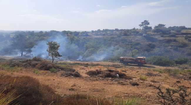 Antalya'da havadan ve karadan müdahale edilen orman yangını söndürüldü