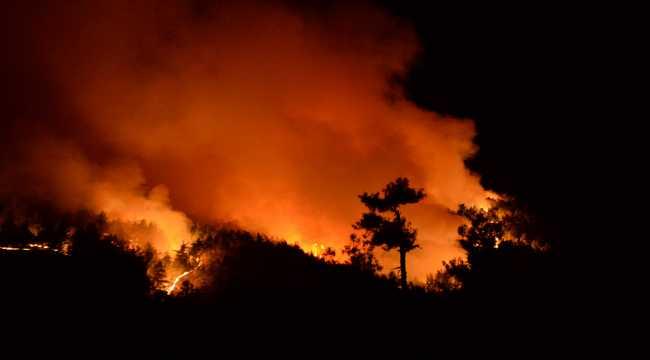 Kahramanmaraş'taki orman yangınına müdahale sürüyor