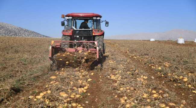 Kayseri'de patates hasadına başlandı