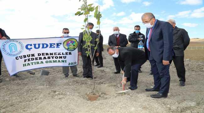 AYBÜ'de kampüste meyve ormanı oluşturuldu