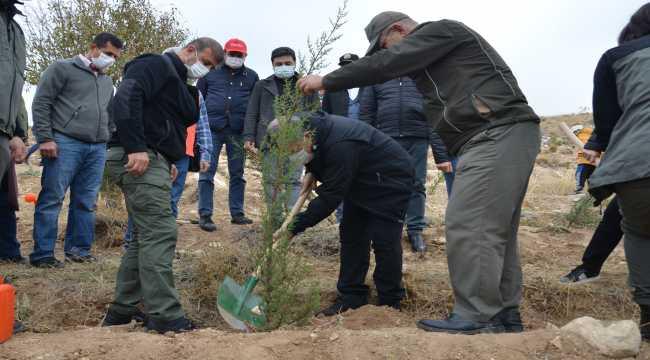 Karaman'da 11 Kasım Milli Ağaçlandırma Günü etkinliği