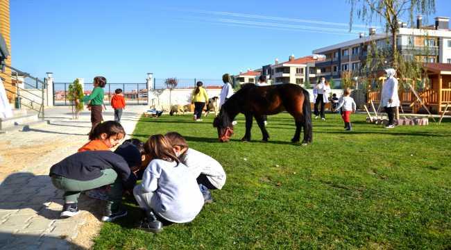 Anaokulu öğrencileri at, ceylan ve kuzularla eğitim görüyor