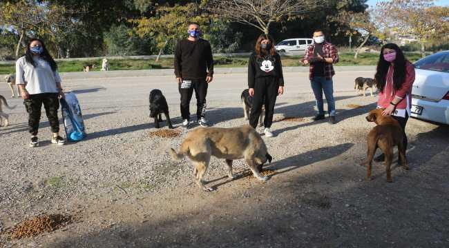 Adana'da sokağa çıkma kısıtlamasında sokak hayvanlarına mama desteği