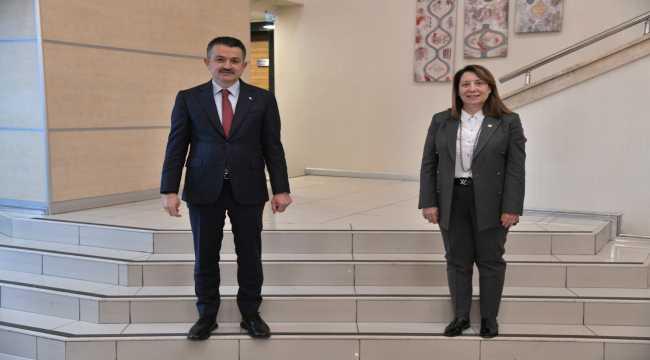 AK Parti Eskişehir Milletvekili Günay'dan Mihalıççık Güreş Göleti açıklaması