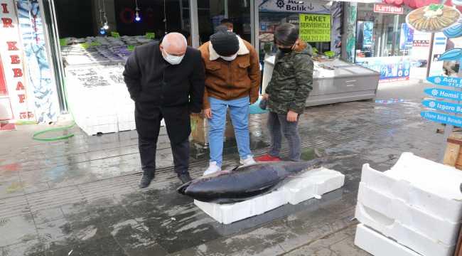 Yozgat'ta 75 kilogramlık orkinos vatandaşların ilgi odağı oldu