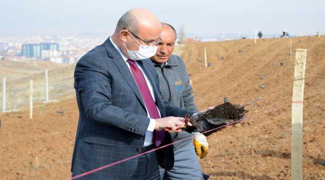 Kırşehir Belediyesinden 18 bin metrekarelik yeni yeşil alan