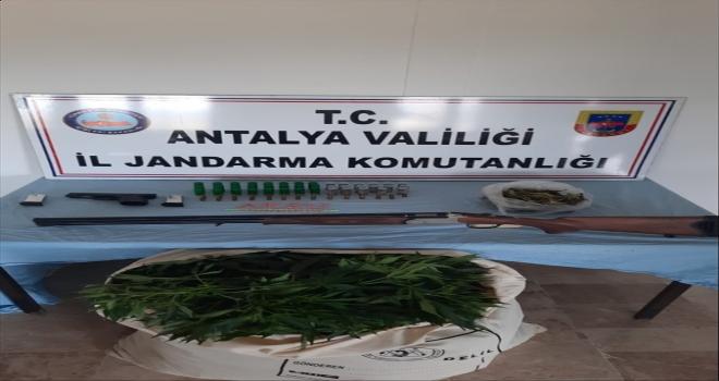 Antalya'da saksı ve bidonlarda Hint keneviri yetiştirdiği öne sürülen 3 şüpheli yakalandı