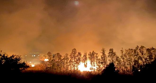 GÜNCELLEME - Kaş'ta sazlık alanda çıkan yangın seraları tehdit ediyor
