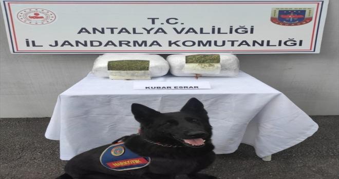 Antalya'da uyuşturucu operasyonunda 4 şüpheli gözaltına alındı