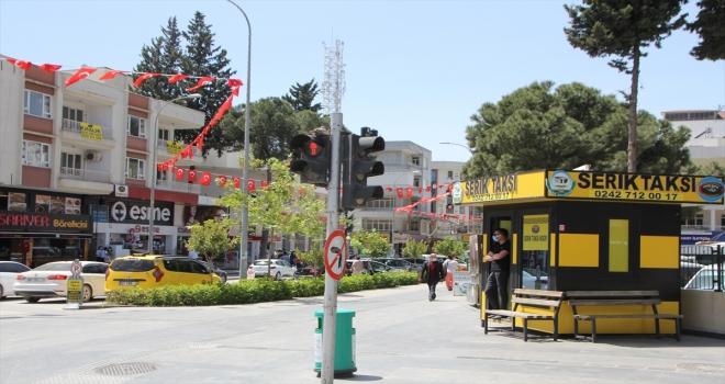 Antalya'da yuva olarak trafik ışığı direğini seçen kumru ilgi çekiyor