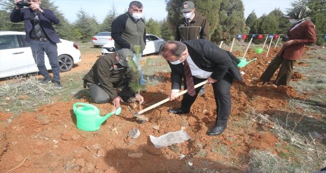 Beyşehir'de şehit ve gaziler için fidanlar toprakla buluştu