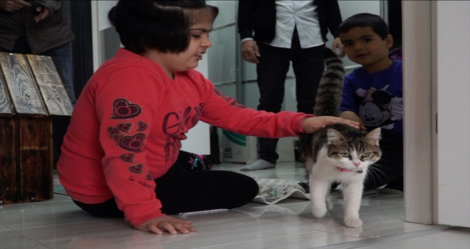 Kayseri Büyükşehir Belediye Başkanı Büyükkılıç, otizmli çocuğun kedi isteğini yerine getirdi