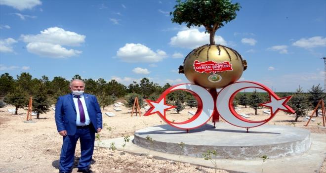 Kırşehir Orman İşletme Müdürü Karaca kentin orman varlığını 18 yılda iki katına çıkardı