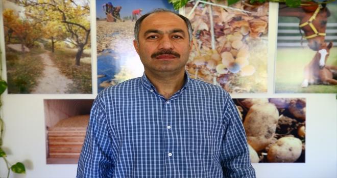 Niğde ve Nevşehir'deki tüketim fazlası 35 bin ton patates ihtiyaç sahiplerine dağıtıldı