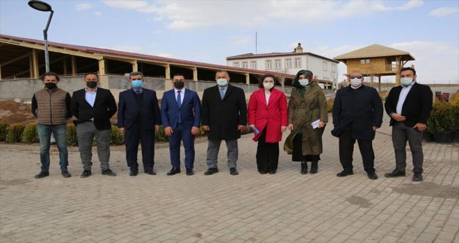 Sivas'ta Kangal köpekleri için inşa edilen modern tesiste sona yaklaşıldı