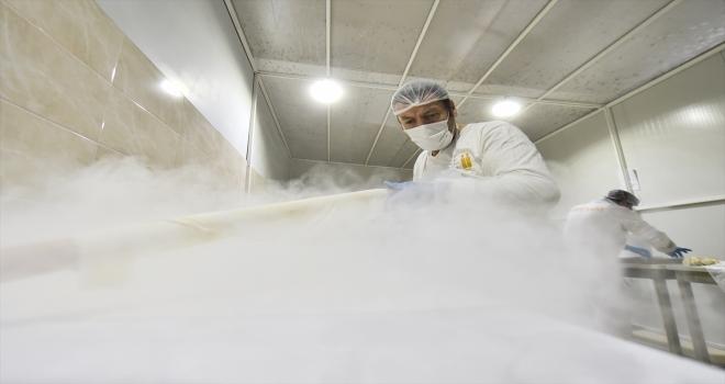 Ankara Halk Ekmek Fabrikası'nda günlük 400 kilogram baklava üretiliyor