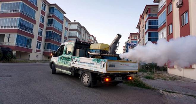 Beypazarı Belediyesinden haşereyle mücadele çalışması