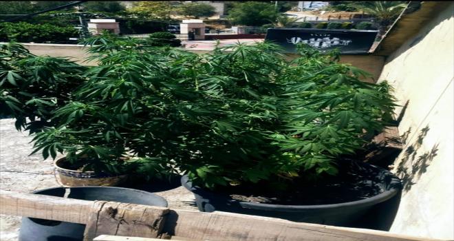 Antalya'daki uyuşturucu operasyonunda bir şüpheli yakalandı