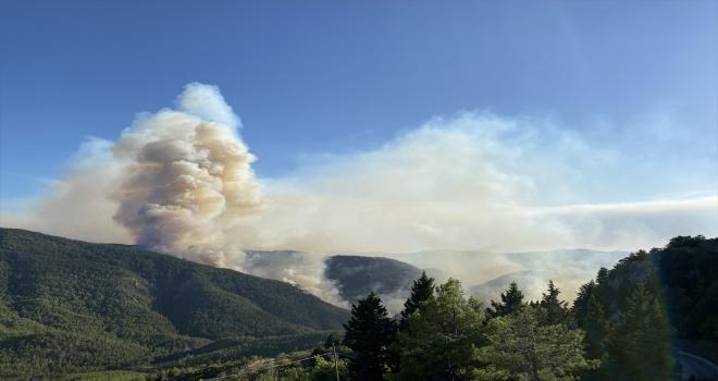Antalya'nın Akseki ilçesindeki yangına müdahale ediliyor