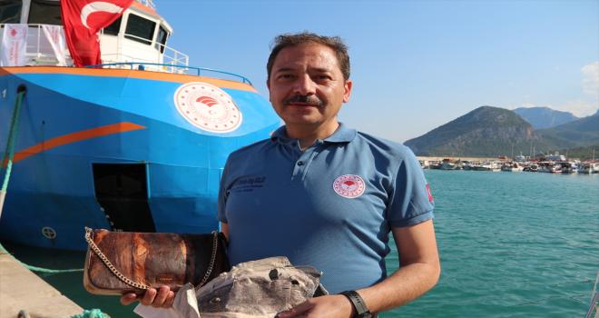 Balon balığının derisi ve zehri sanayide kullanılacak