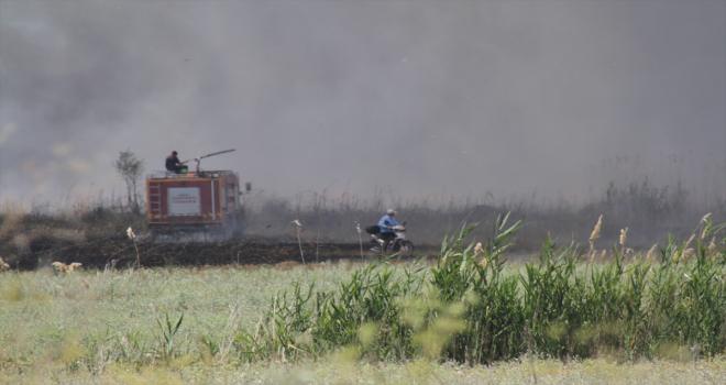 Beyşehir Gölü kıyılarındaki sazlık alanda çıkan yangın itfaiye ekiplerince kontrol altına alındı