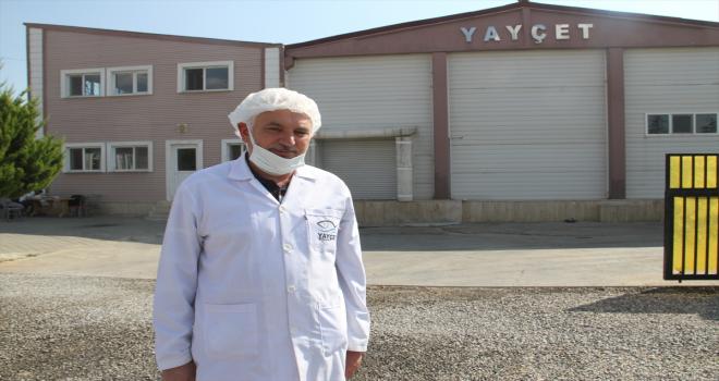 Konya'daki su ürünleri işleme tesisinden 5 ülkeye deniz ürünü ihracatı