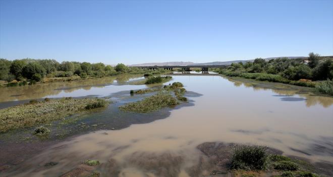 Kuraklık Türkiye'nin en uzun nehrini ve Sivas'ın barajlarını da etkiledi