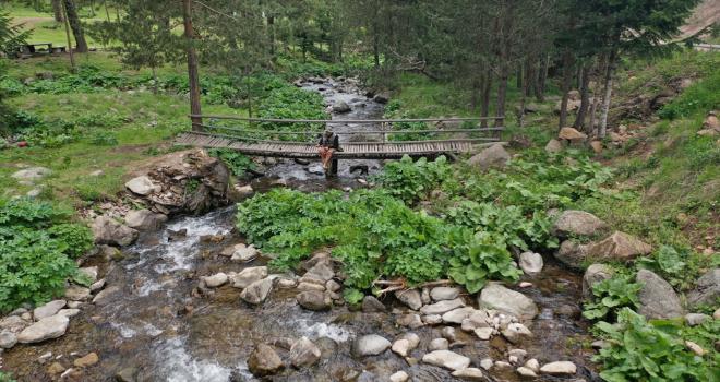Sivas'ın yaylaları kamp turizminin yeni gözdesi oldu