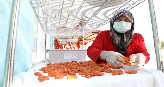 Antalyalı kadın girişimciler, hobi bahçelerinde yetiştirdikleri ürünleri tüketiciye sunuyor