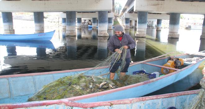 Beyşehirli balıkçılar Çin sazanıyla yurt dışına açıldı