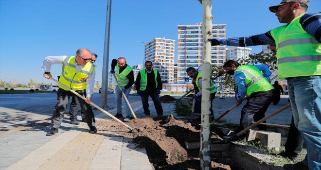 Sivas Belediyesi 5 bininci ağacı toprakla buluşturdu