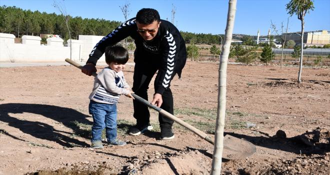Sivas'ta orman yangınlarına dikkati çekmek için meyve fidanları toprakla buluşturuldu