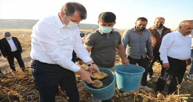 Sivas'ta tarım işçilerinin çocukları için çadır sınıflar oluşturulacak