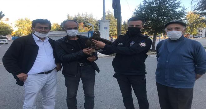 Yaralı Şahin'e polis ekipleri sahip çıktı