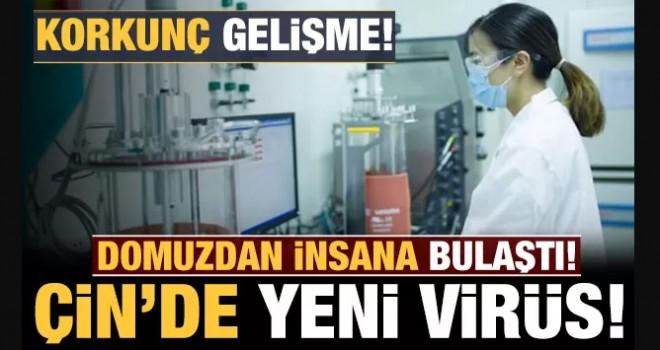 Çin'de korkutan yeni virüs: Dünyaya yayılma ihtimali var!