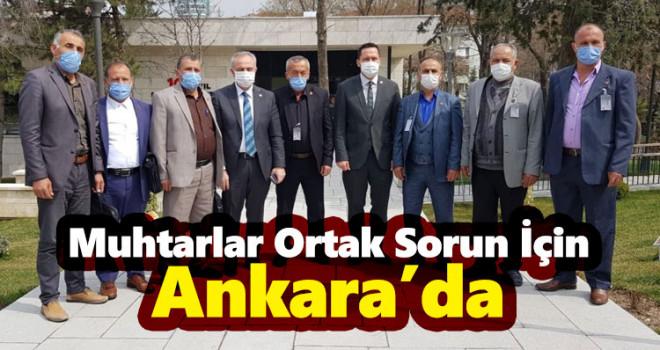 Karaman'ın 6 köy muhtarı ortak sorun için Ankara'da