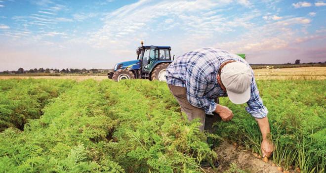 Çiftçiye 1.6 milyar TL hasar ödendi
