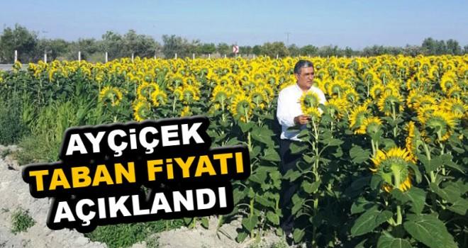 Konya Şeker ayçiçek taban fiyatını açıkladı