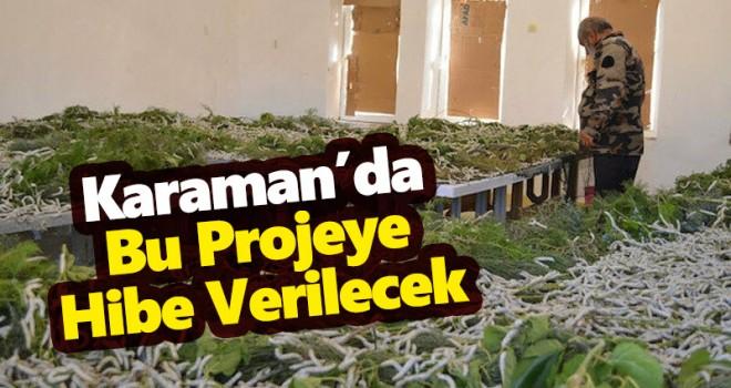 Karaman'da ipek böceği yetiştiriciliği yatırımları desteklenecek