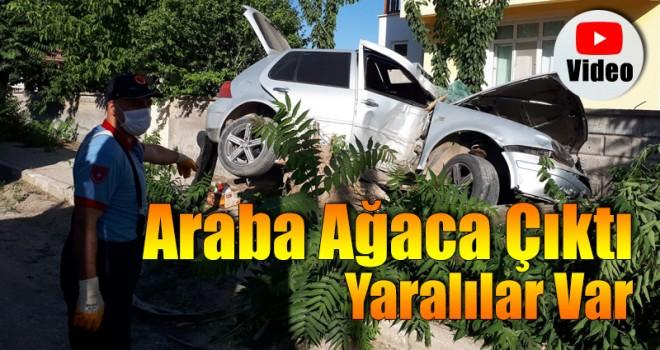 Araba Ağaca Çıktı Yaralılar Var