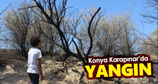 Konya Karapınar'da yangın