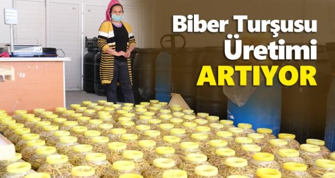 Mut'ta biber turşusu üretimi yaygınlaştırılıyor