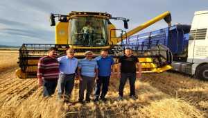 Arpa ve buğday hasadından yüksek verim bekleniyor